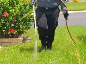 Bahçelerinizde haşere böcek ilaçlama işlemi