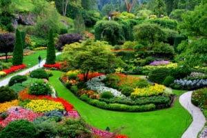 park ve bahçelerin ilaçlama hizmetleri